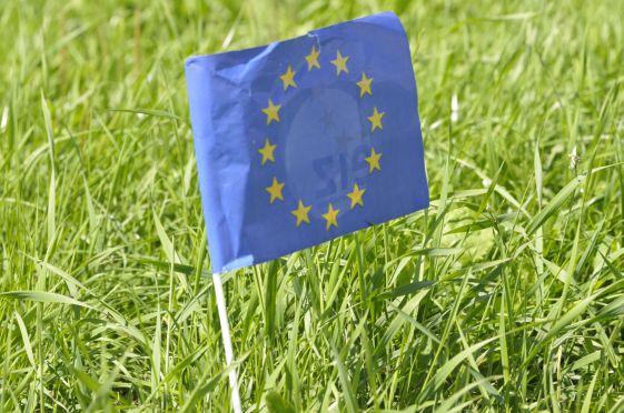 Nächster EU-Agrarhaushalt fällt knapper aus - Foto: landpixel
