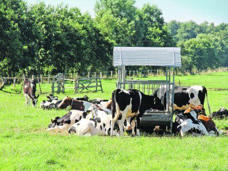 LROP soll klimafreundlicher werden - Foto: Gerstenkorn