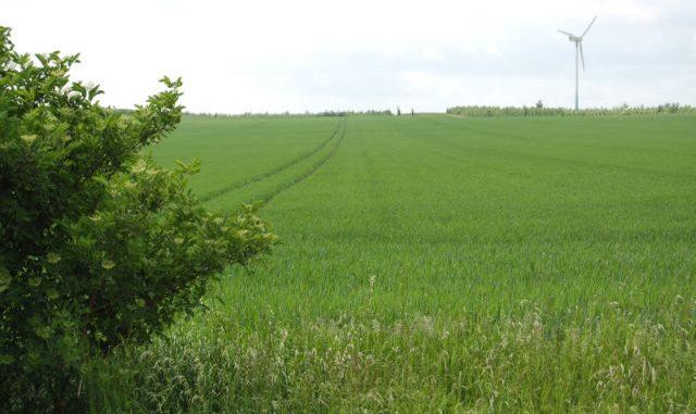 Die EU-Landwirtschaftsexperten bewegen sich doch -