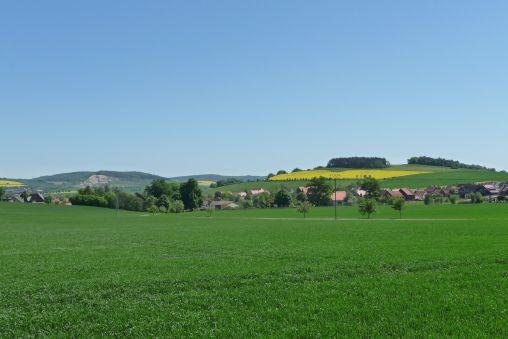 Spielraum für Regulierung des Bodenmarktes - Foto: landpixel