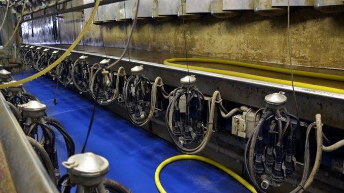 Milchmarkt im Aufwärtstrend - Foto: landpixel