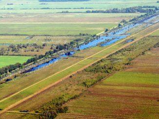 Bauern sehen mehr Flächendruck - Foto: landpixel