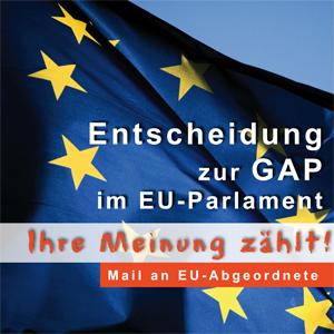Mail-Aktion an EU-Parlamentarier gestartet -