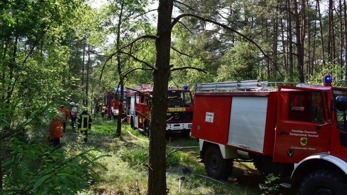 Feuerwehr Wald Waldbrand