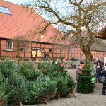Weihnachtsbäume Verkauf